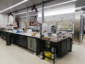 Ashley's lab, an island in the center of the room with various chemicals and equipment on the top. Finding motivation at work can sometimes be a struggle too.