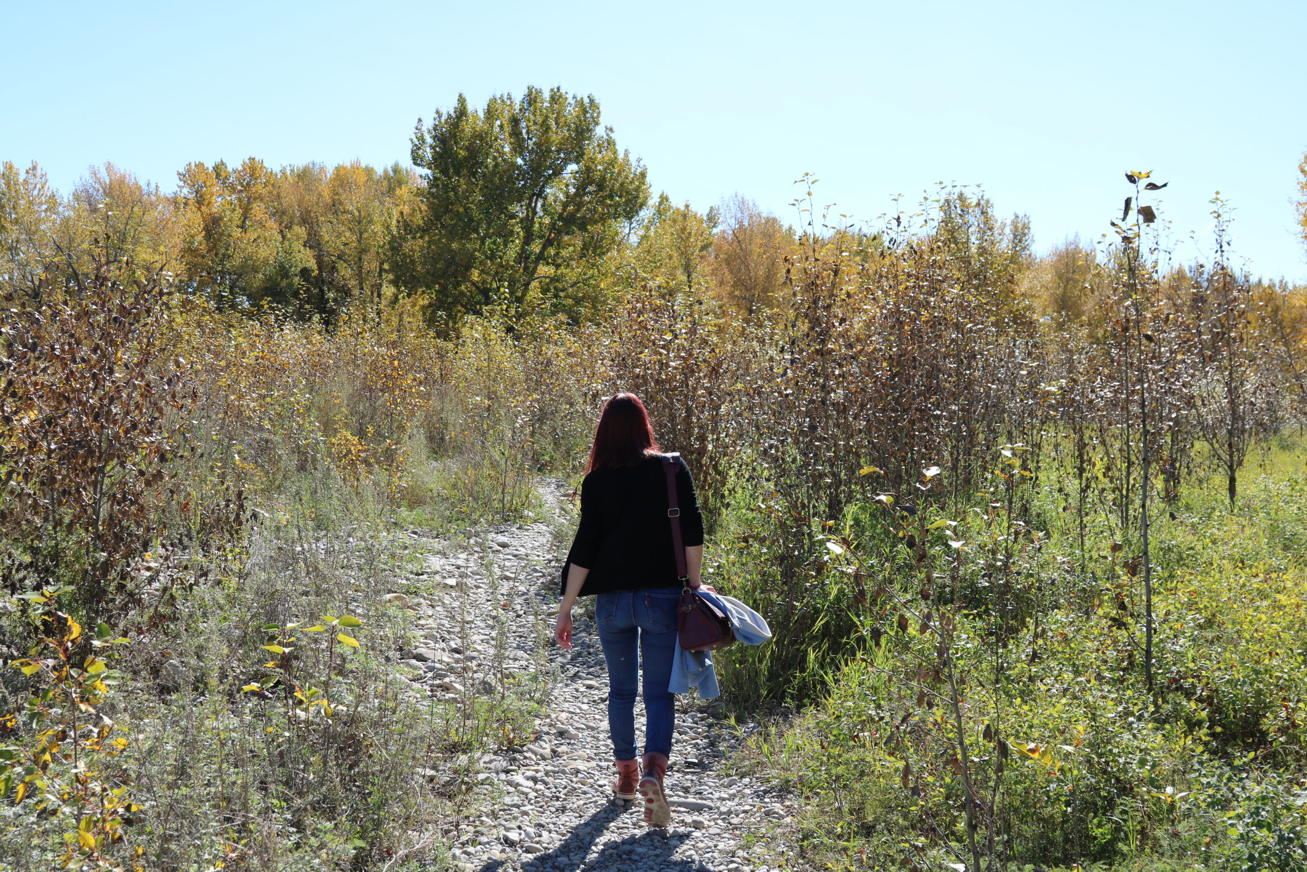 This post is here to offer hands on advice in a scary time. It can feel like we're battling a lonely journey, like I am in this picture as I walk through Fish Creek Park, with weeds springing up all around me. But let's be alone together.