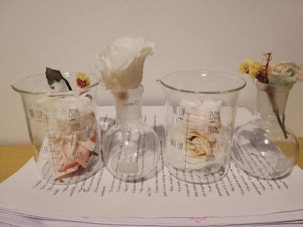 A creative scientist. Is this an oxymoron? The picture shows flowers in beakers and flasks.
