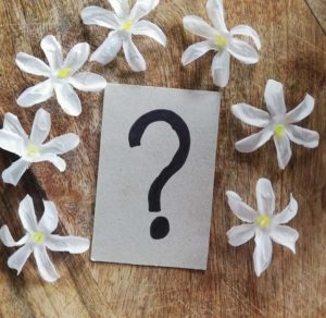 The question is, what will the feedback be? Everyone hopes it's as beautiful as these decorative flowers surrounding the question mark painted on cardboard in this picture.