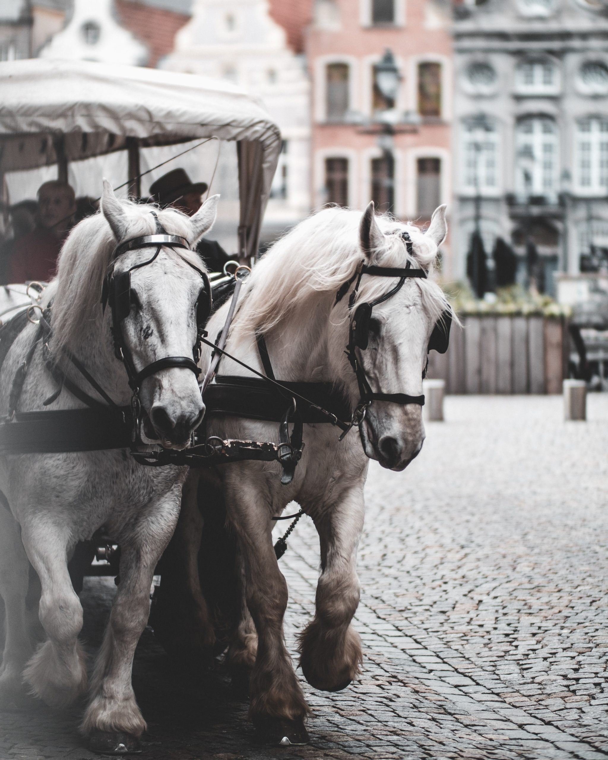 The Horse is always before the cart. If you put in the effort, hopefully you'll find the cart holds a reward.